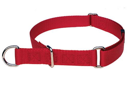 choker collar
