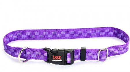 Plastic Buckle Dog Collar - Checker Violet