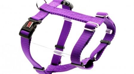 Tuff Lock Cat violet_figure-h_harness