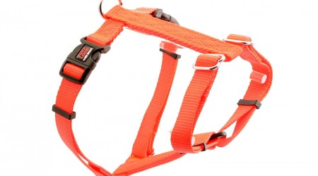 Premium Tuff Lock Cat Harness - orange_figure-h_harness