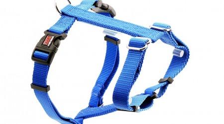 Premium Tuff Lock Cat Harness - royal_figure-h_harness